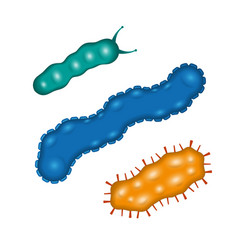 Bacteria and germs viruses micro-organisms vector