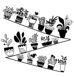 doodle of shelf with housplants monochrome vector image