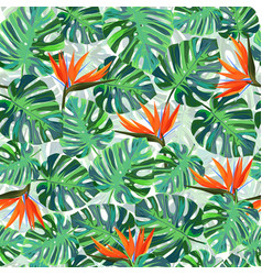 Exotic tropical pattern with monstera leaves vector