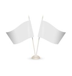 flag mock-up vector image
