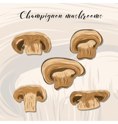 Fried champignon mushrooms on colourful background vector