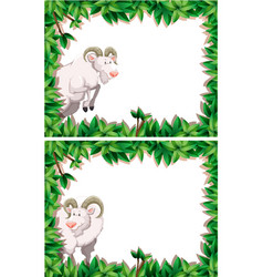 goat in nature frame collection vector image