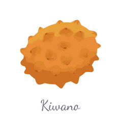 Kiwano exotic juicy fruit isolated icon vector