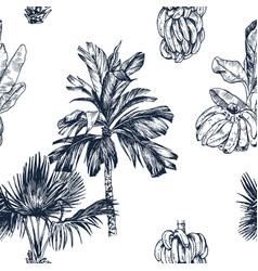 palm tree and banana fruit vector image