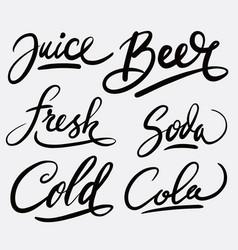 juice and beer hand written typography vector image
