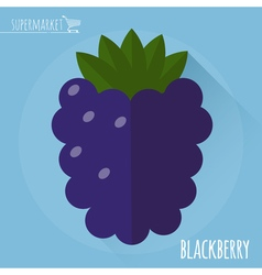 Blackberry icon vector image