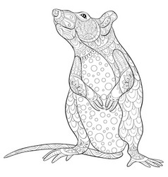 Adult coloring bookpage a cute rat image for vector
