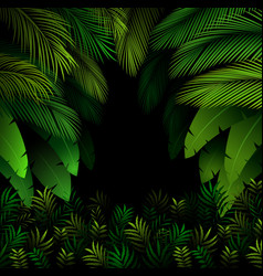 exotic pattern with tropical leaves on a black vector image
