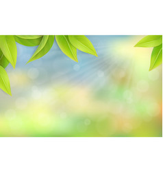 green juicy leaves on a blurred background vector image