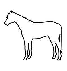 Horse livestock animal design vector
