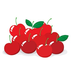 Red cherries with stem vector image
