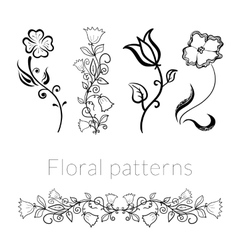 Collection stylish black white flowers vector image vector image