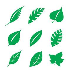 green leaves design element vector image