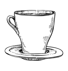 Coffee cup freehand pencil drawing vector image vector image