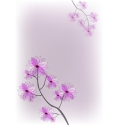beautiful pink flowers desing background eps10 vector image