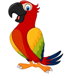 Cartoon cute parrot vector