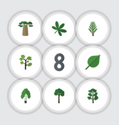 Flat icon natural set of maple forest jungle and vector