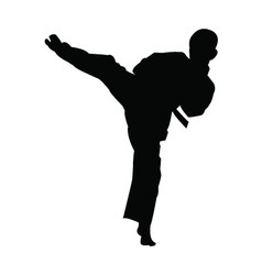 Karate boy kicking silhouette vector image