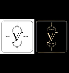 yv or vy initial letter and graphic name yv or vy vector image
