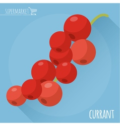 Red currant icon vector image vector image