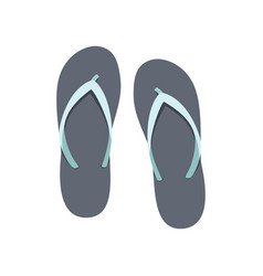 Flip-flop set on a white background rubber vector