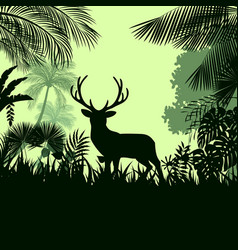Forest background with wild deer trees vector