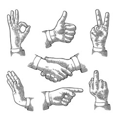 male hand sign like handshake ok stop middle vector image