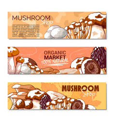 mushroom banner copy space vector image