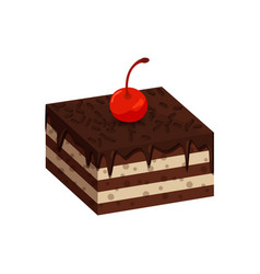 tasty cake with dark chocolate and cherries on top vector image