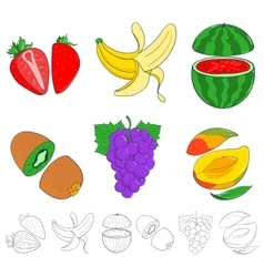 set of painted fruits vector image