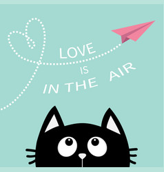 black cat looking up to pink flying origami paper vector image