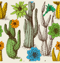cactus in bloom seamless pattern hand drawn vector image