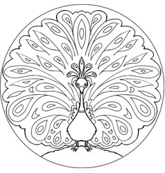 Coloring peacock mandala vector