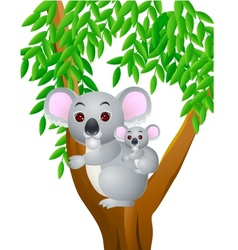 cute mother and baby koala vector image