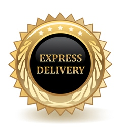 Express delivery badge vector