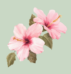 Watercolor hibiscus vector