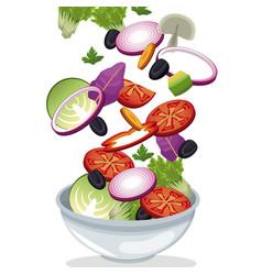 bowl salad vegetables fresh vitamins vector image