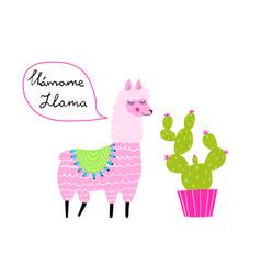 fun animal lama speaking spanish and cactus hand vector image