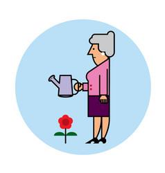 grandmother cartoon vector image