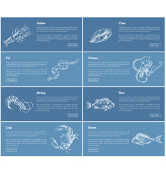 lobster bass fish posters set vector image