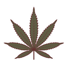 Marijuana or cannabis leaf medical cannabis vector