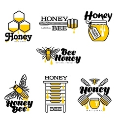 Hand-drawn bee hive honey jar and dipper logo vector image