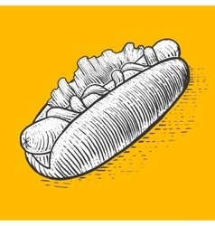 Hot dog fast food engraving style vector image vector image