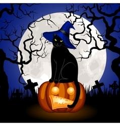 black cat and pumpkin vector image vector image