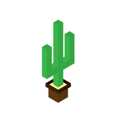 cactus plant 3d and design vector image