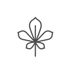 chestnut leaf line icon vector image