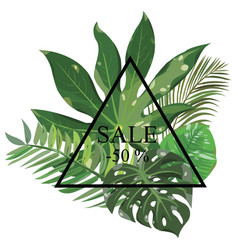 frame with leaves tropical plants frame vector image