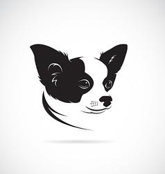 image an chihuahua dog vector image