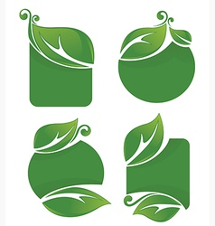 Leaf frames vector