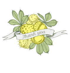 Ribbon design of buckeyes with thank you sing vector